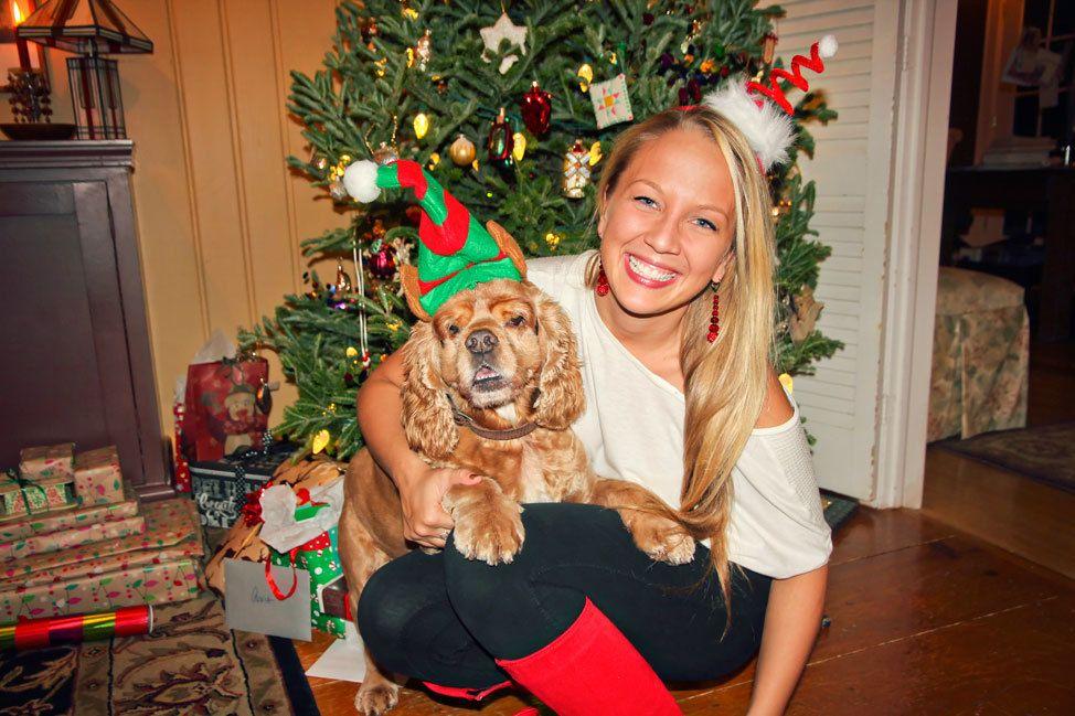 Christmas Puppy Portrait
