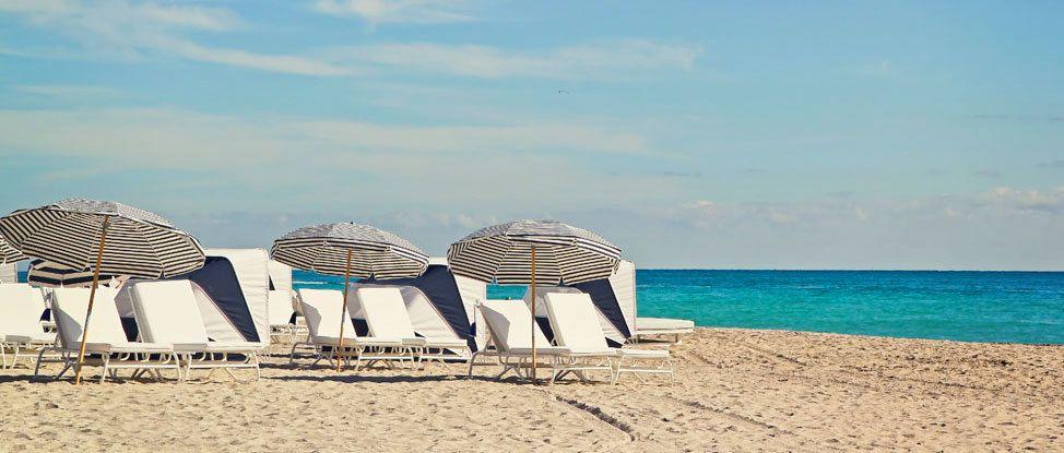 Miami Dreaming thumbnail