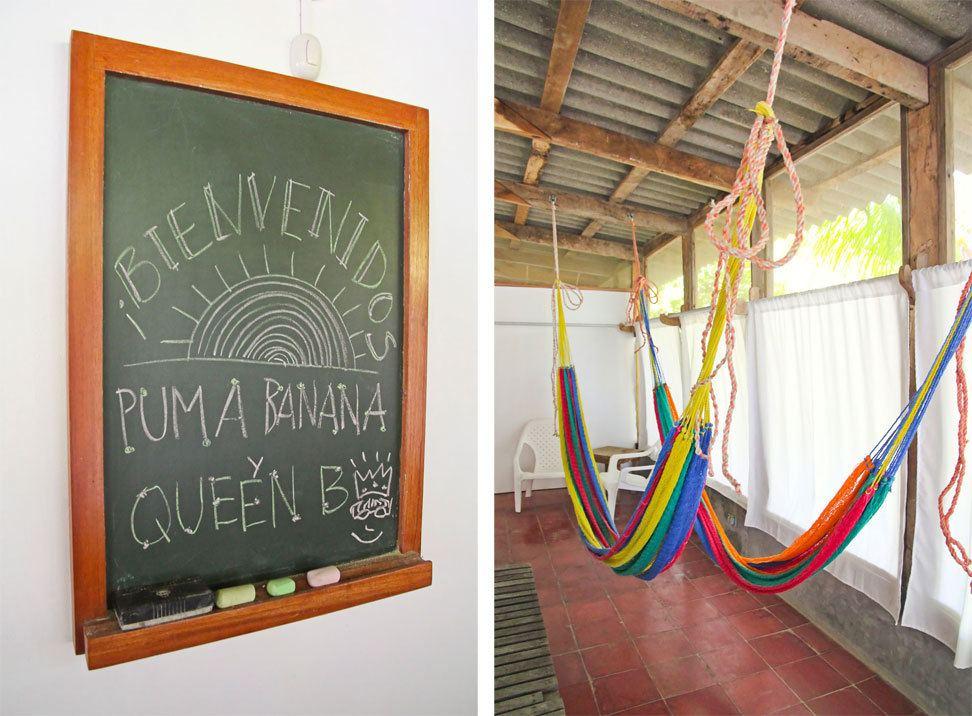 La Tortuga Verde, El Cuco, El Salvador