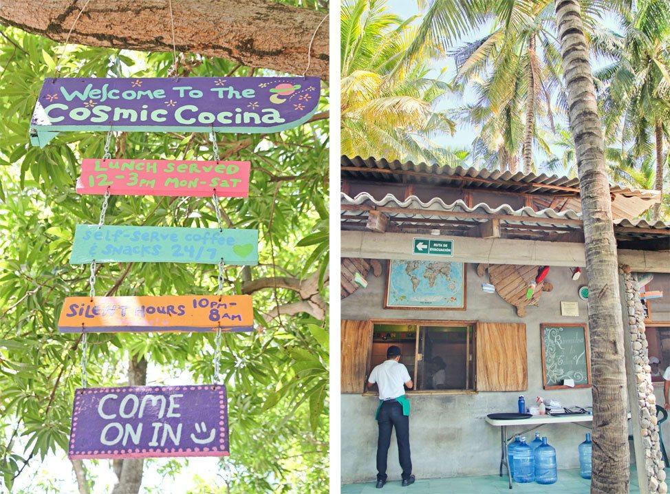 La Tortuga Verde El Salvador