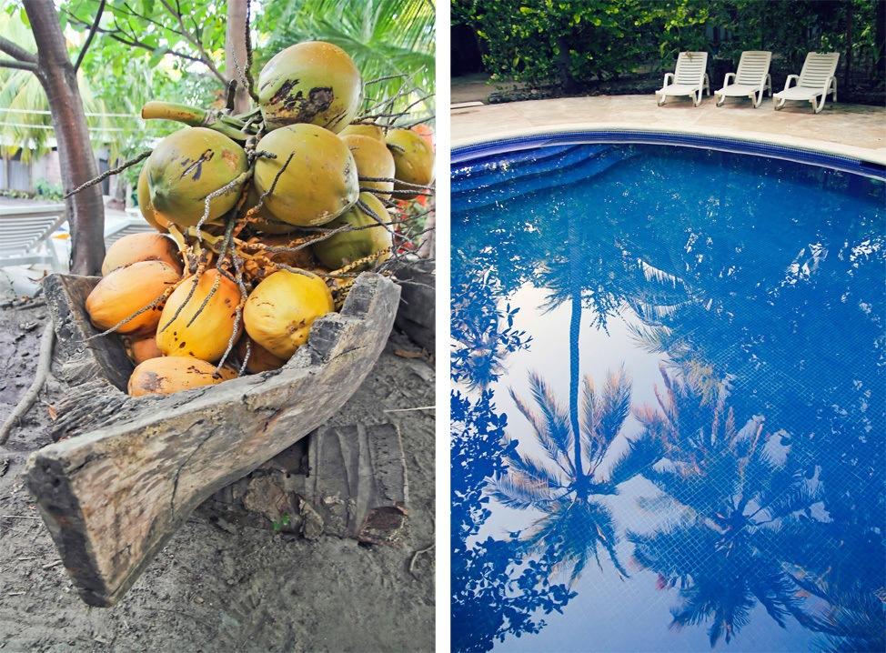 La Tortuga Verde El Salvador Pool