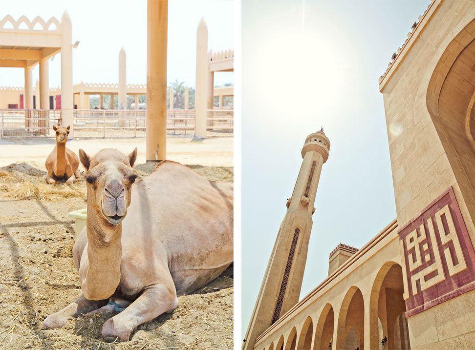 Bahrain Travel