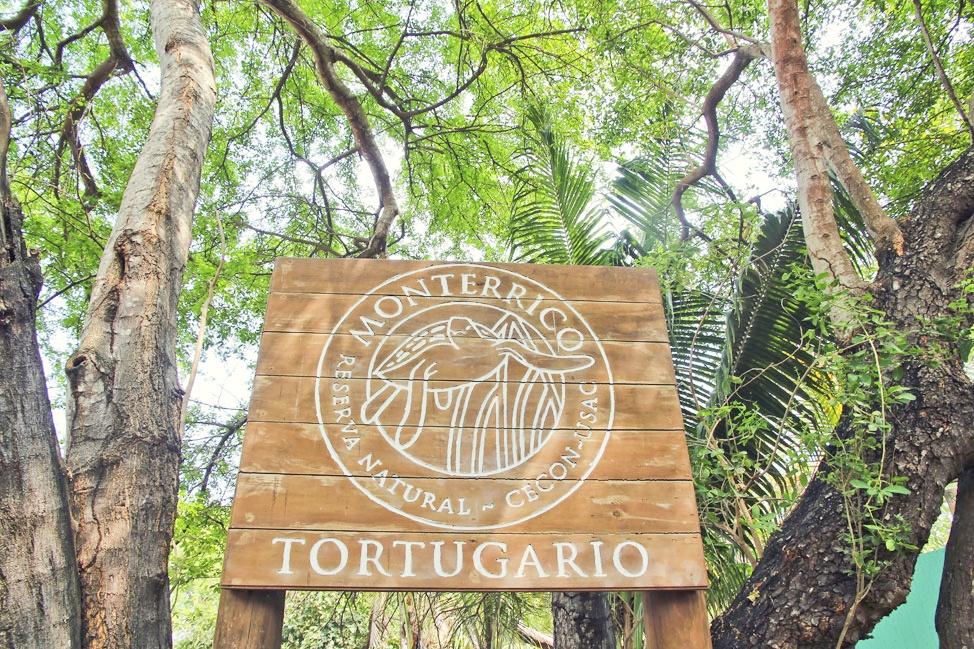 Tortugario, Monterrico, Guatemala