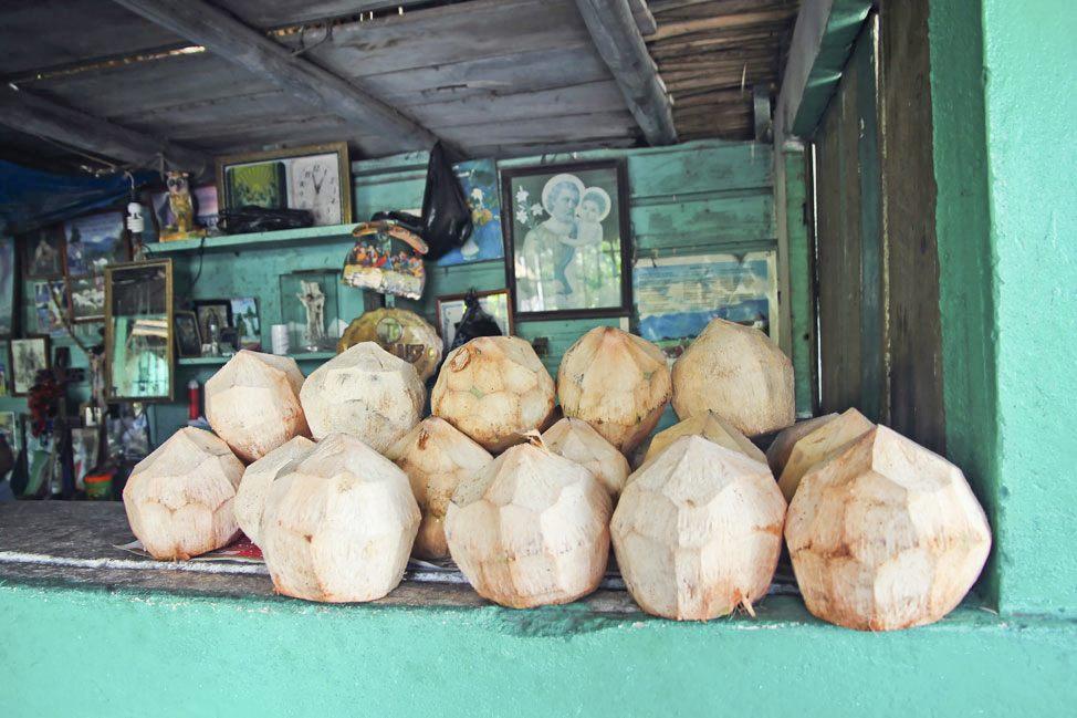 Coconuts for sale, Monterrico, Guatemala