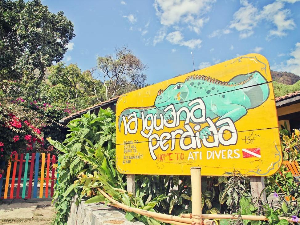 Diving at La Iguana Perdida