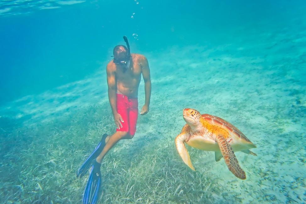 Hol Chan Marine Reserve Tours