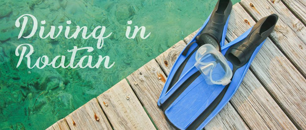 Diving in Barefoot: Scuba Diving Roatan with Barefoot Cay thumbnail