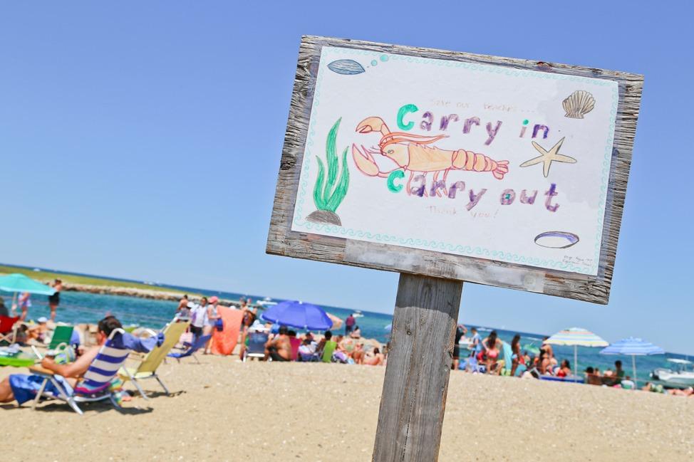 State Beach Martha's Vineyard