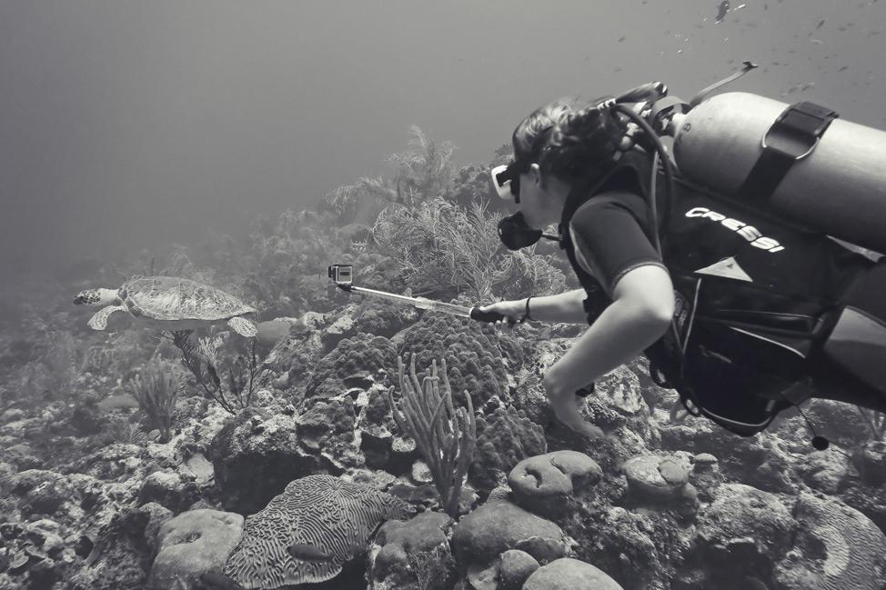 East Side Divers Bonaire
