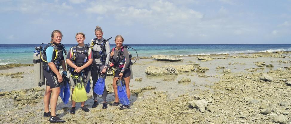 Diving Like a VIP in Bonaire thumbnail