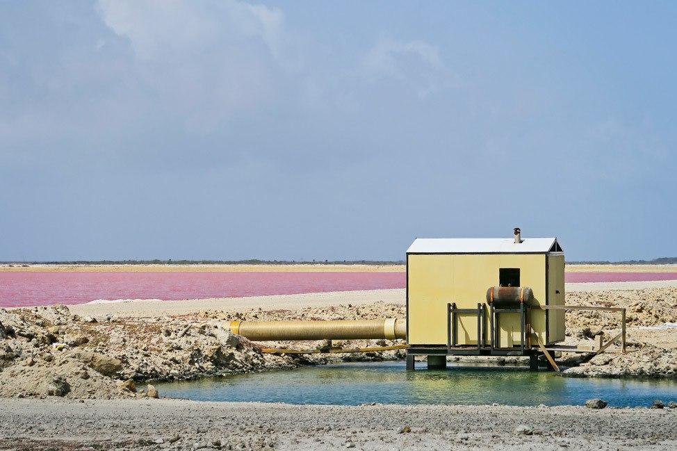 Salt Pier Bonaire