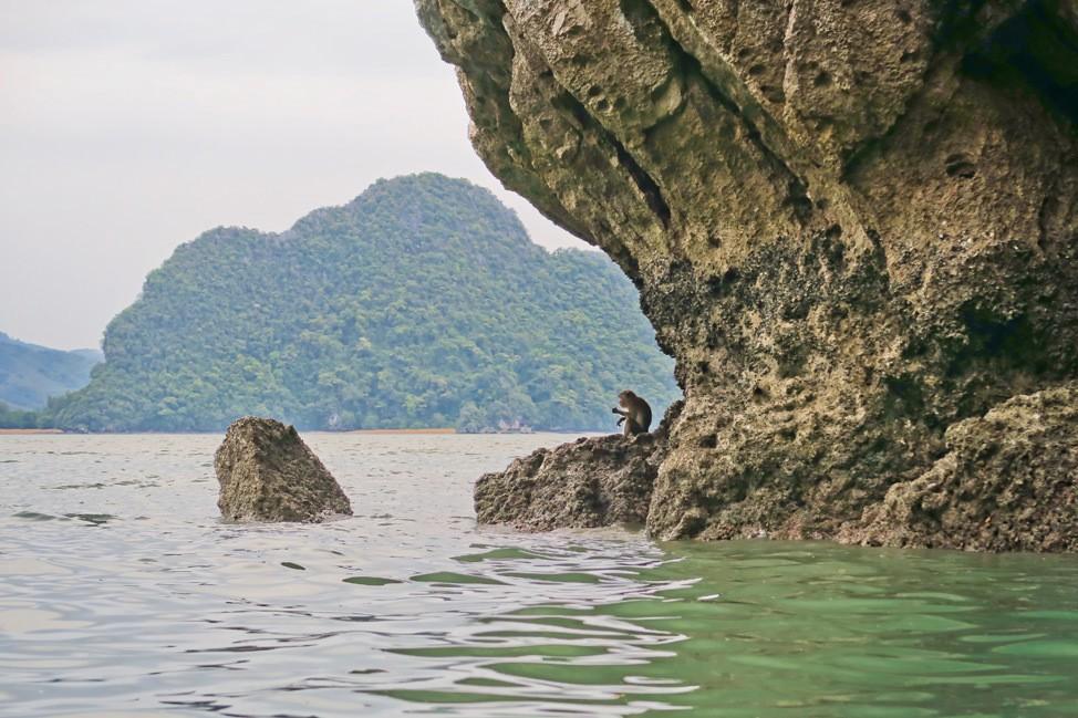 Viator Phang Nga Bay Tour