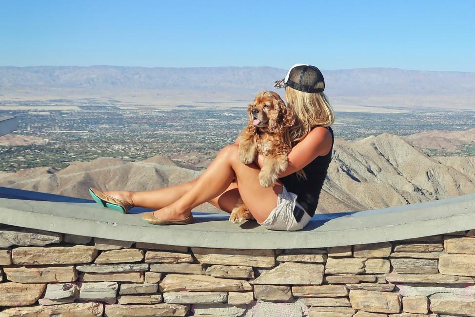 Dog Friendly Palm Springs