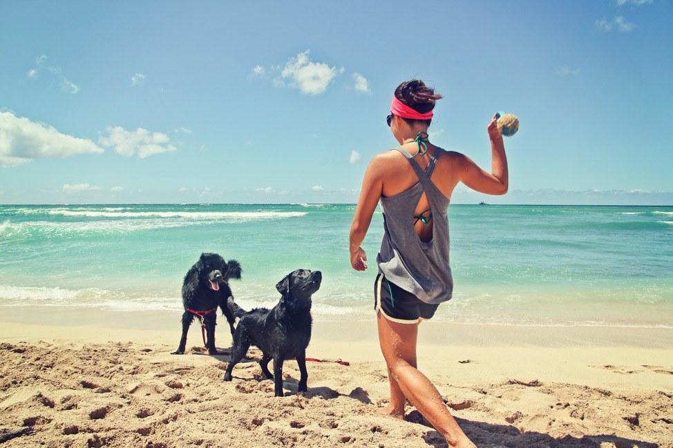 Dog Beach Oahu