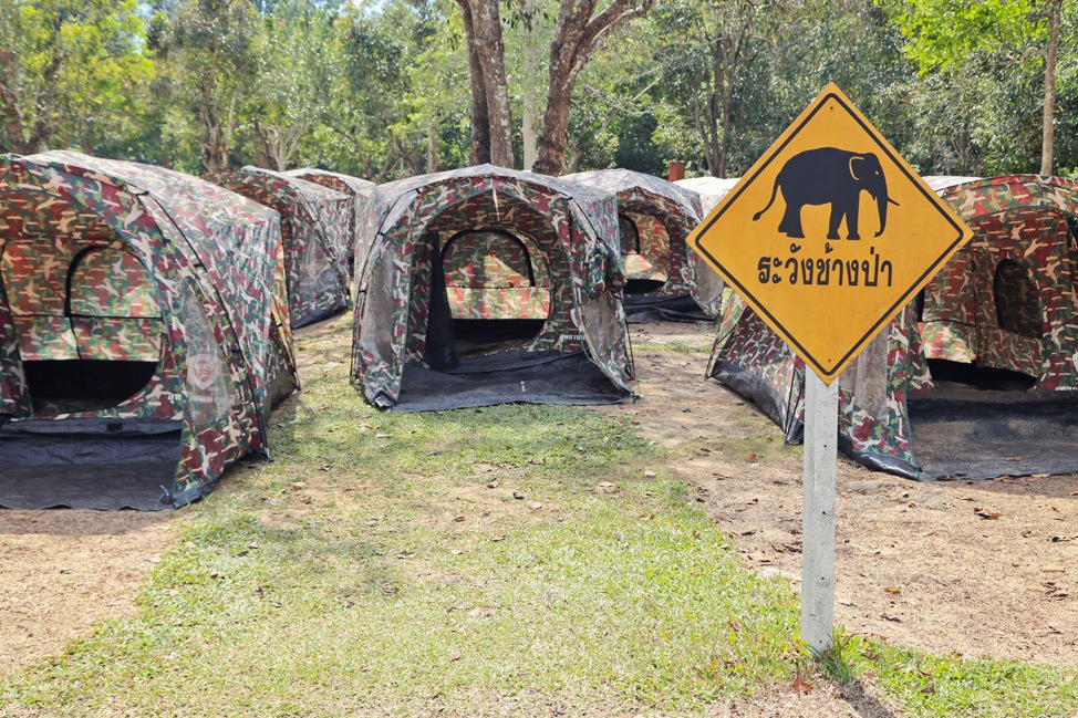 Visiting Khao Yai National Park Independently