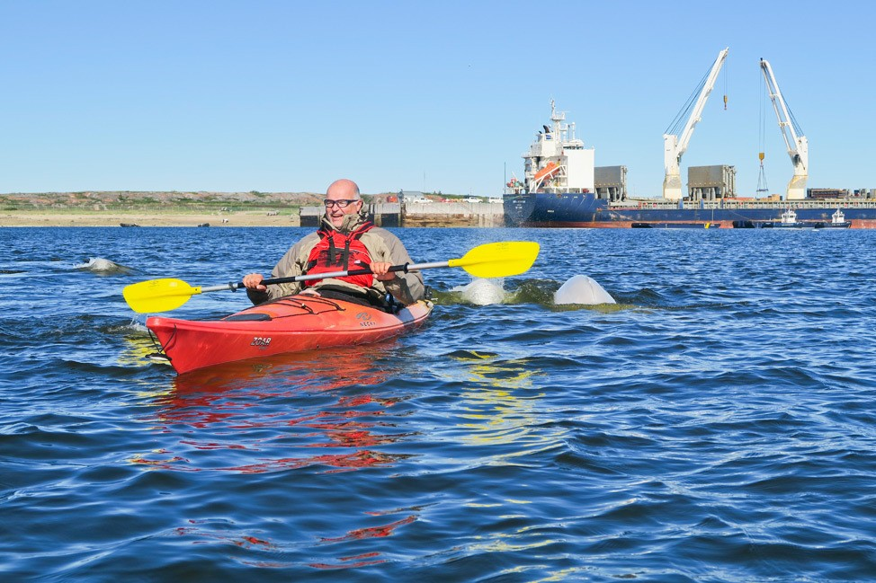 Kayaking with Beluga Whales Churchill Canada