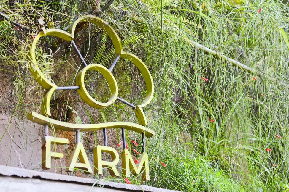 Farm Sao Paulo