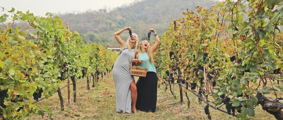You Had Me At Merlot: Continuing Thailand Wine Weekend at PB Valley Vineyards thumbnail