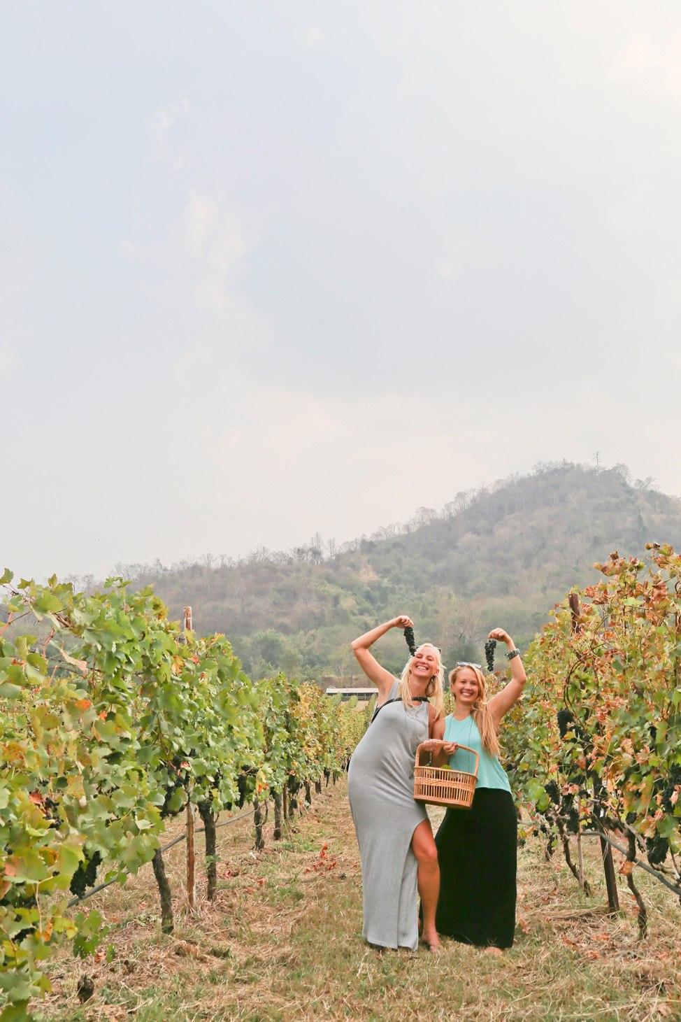 Thailand Khao Yai Wine Trip