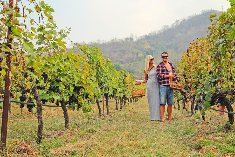 Thailand Wine Trip Khao Yai