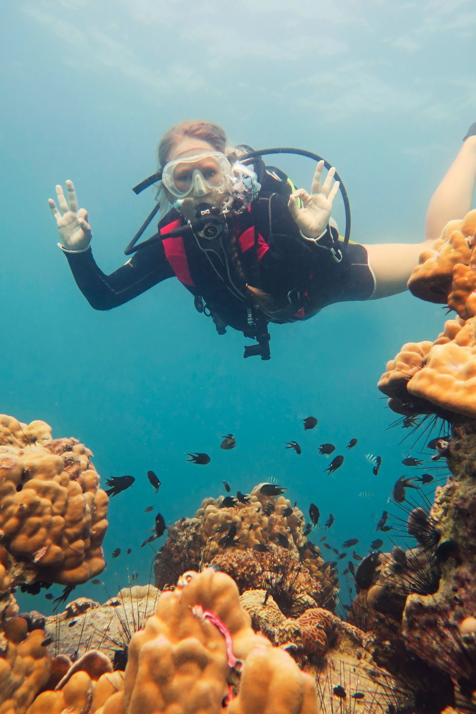 Ban's Koh Tao Course Review