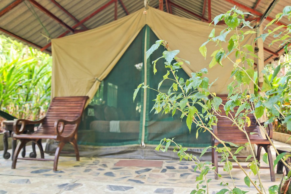 Luxury Tented Camp at Elephant Hills, Khao Sok, Thailand