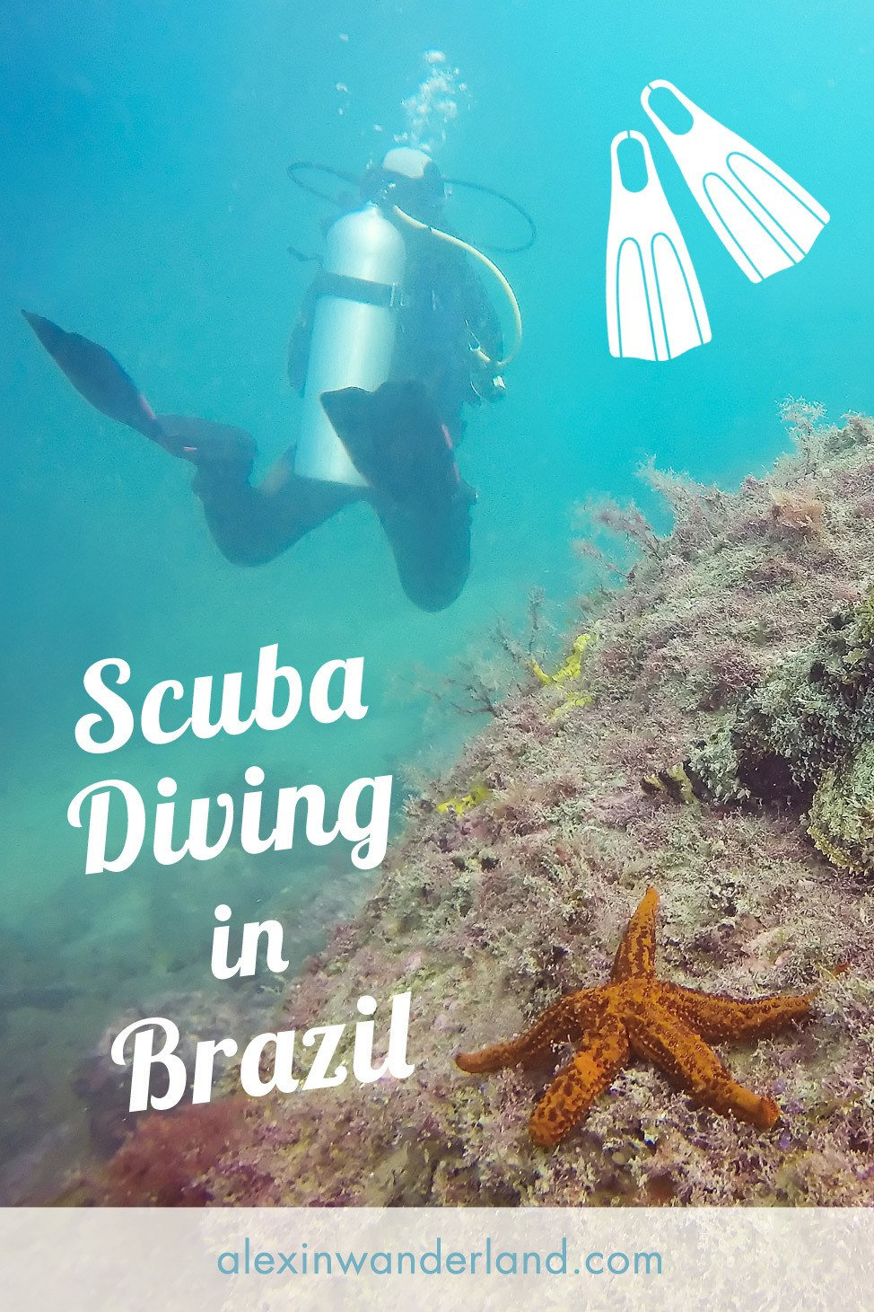 Diving in Arraial do Cabo, Brazil