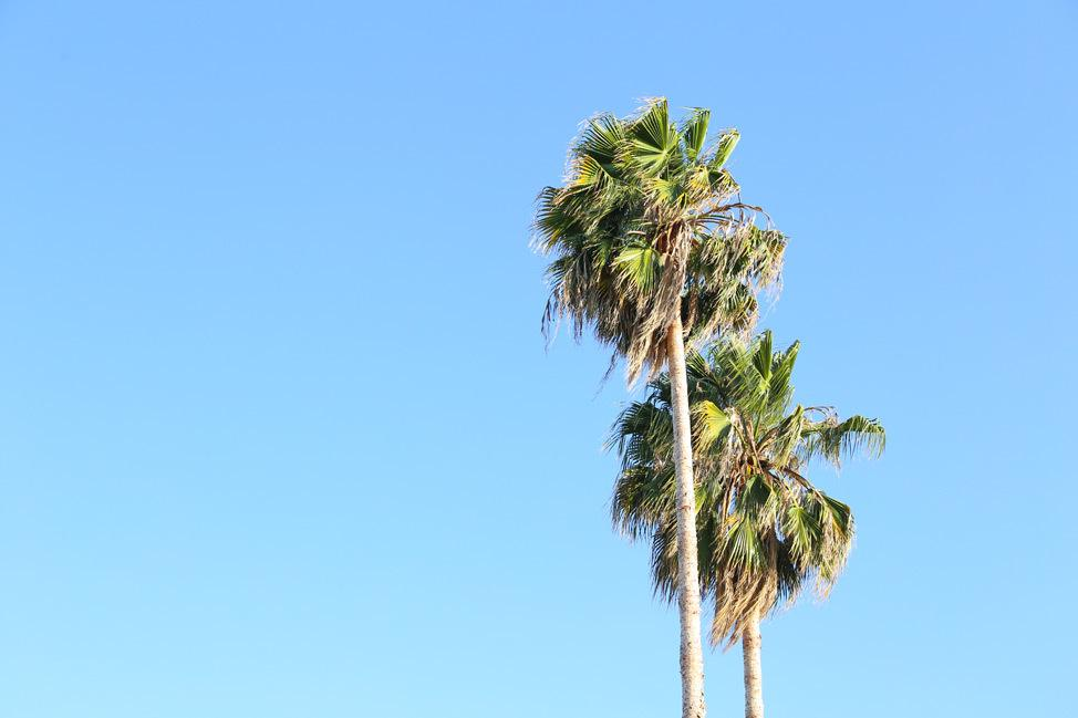 Los Angeles Travel Blog