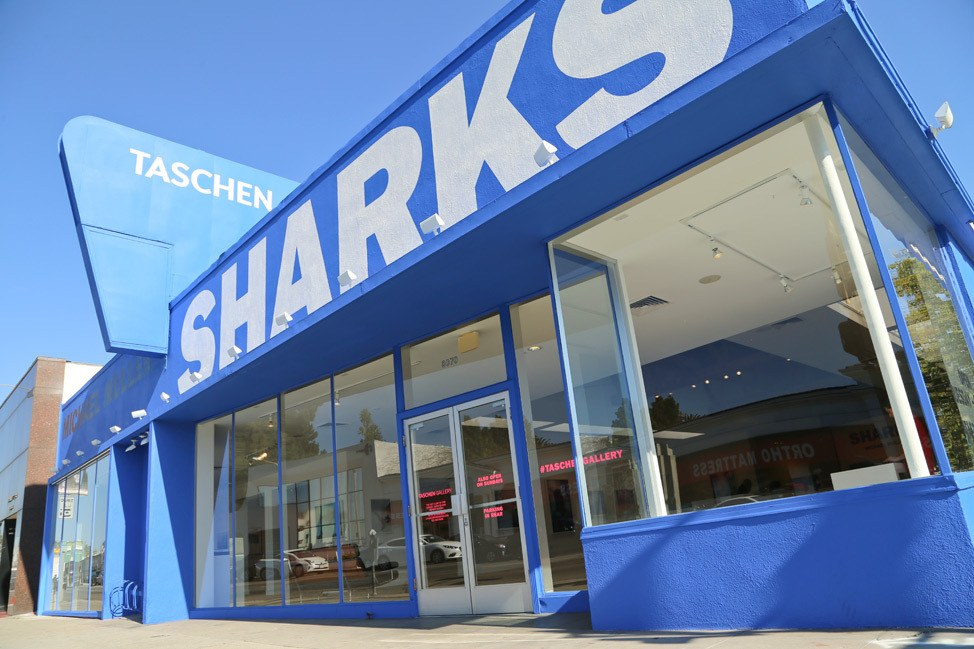 Sharks at Taschen Gallery Los Angeles