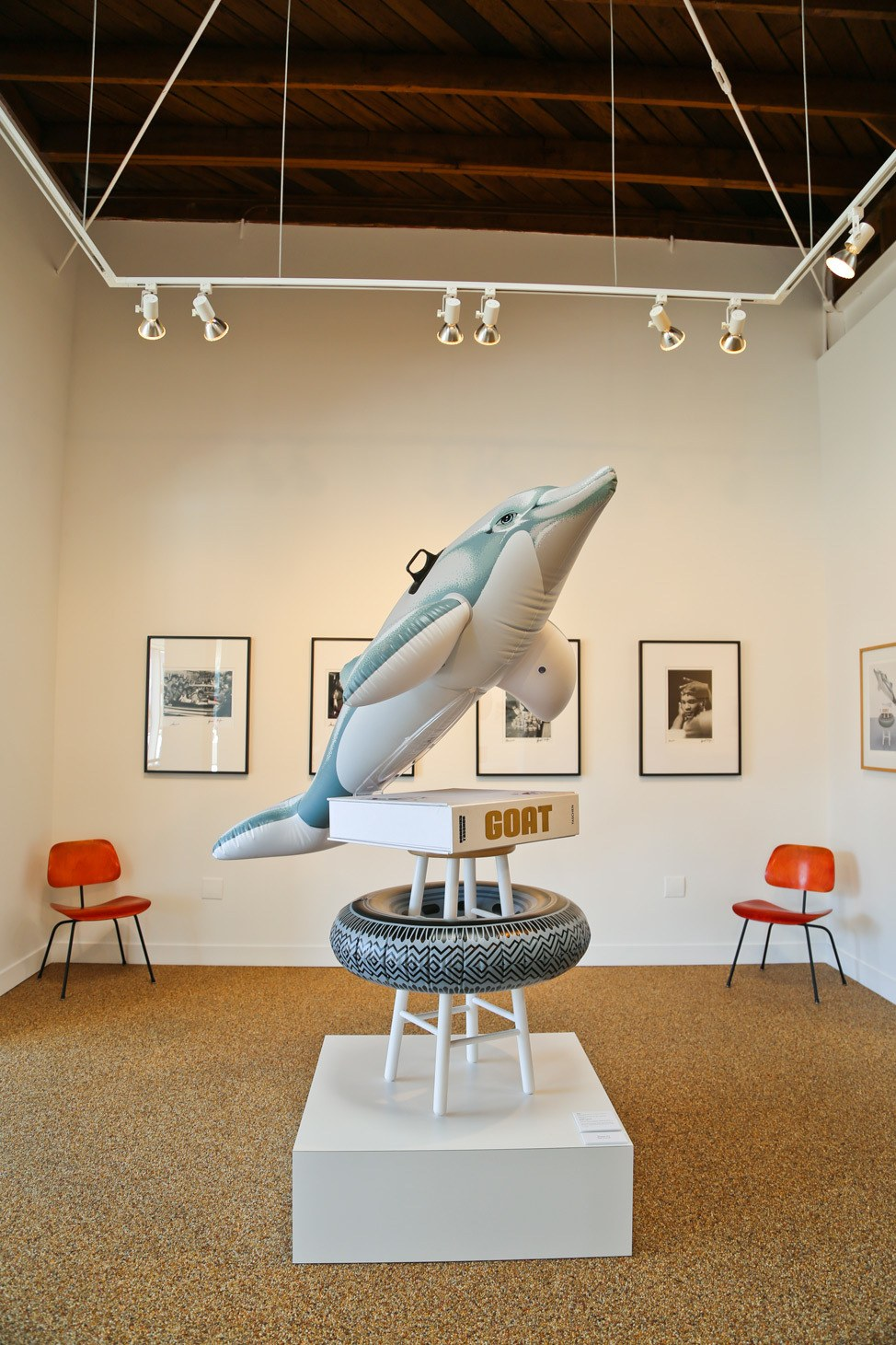 Sharks at Taschen Gallery Los Angeles