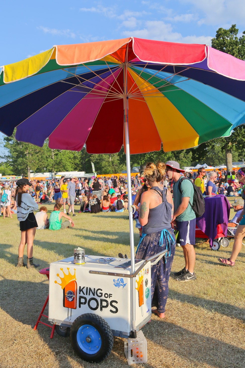 Bonnaroo 2017 Blog Review Recap