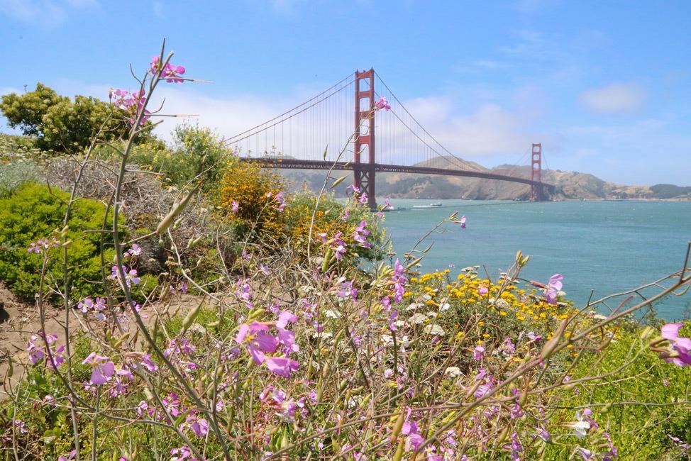 USA Travel Blog Review