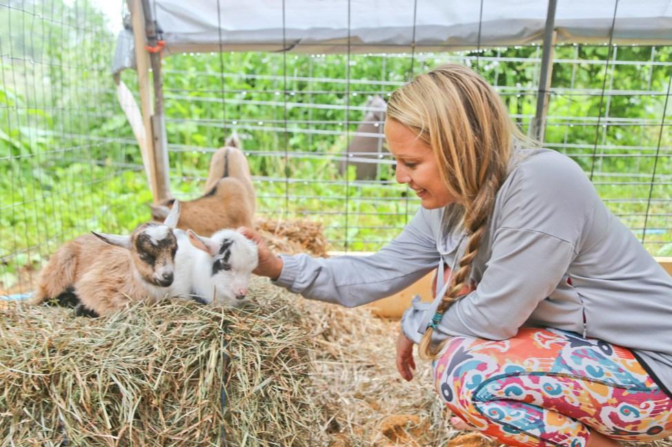 Goat Yoga Martha's Vineyard