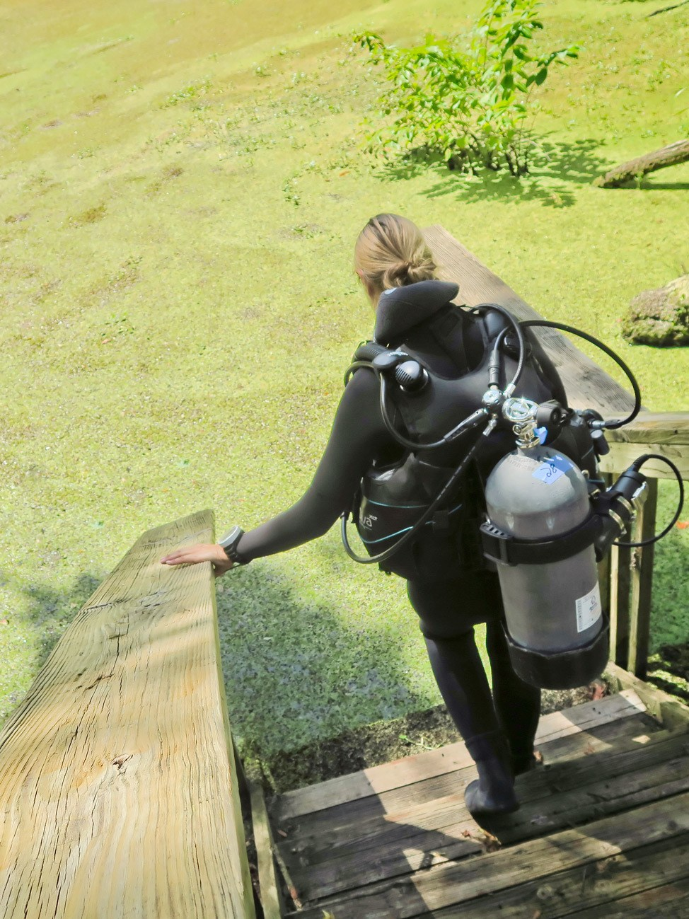 Diving at Manatee Springs State Park
