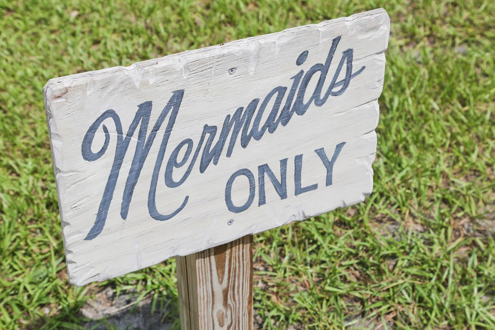 Weeki Wachee Mermaids at Weeki Wachee State Park