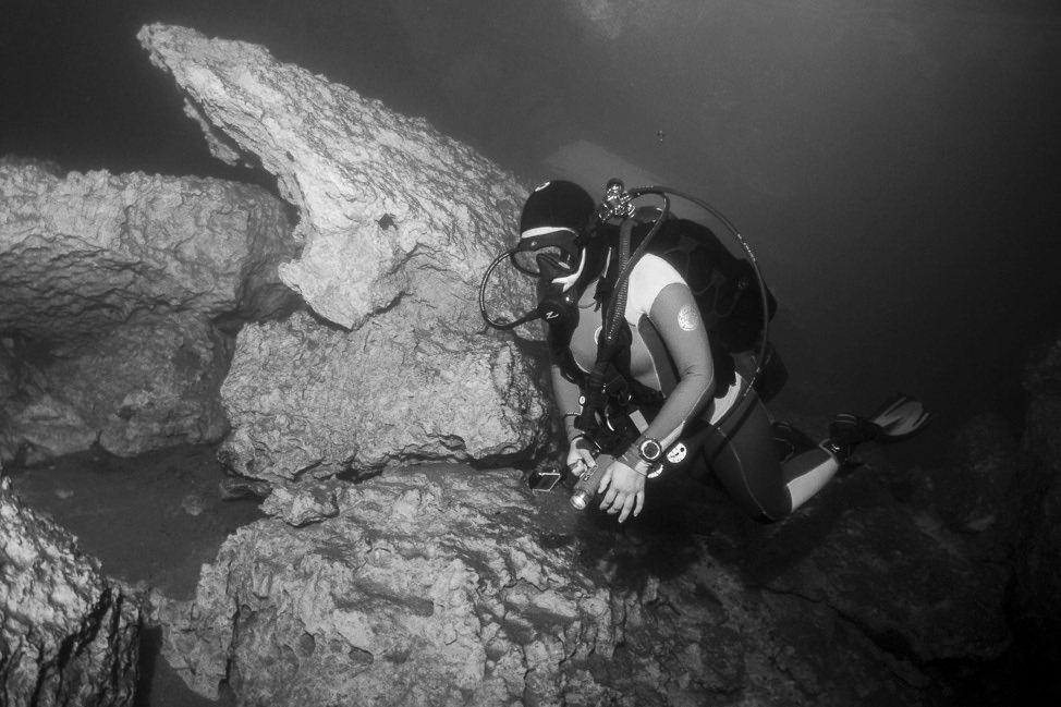 Scuba Diving Devil's Den, Williston, Florida