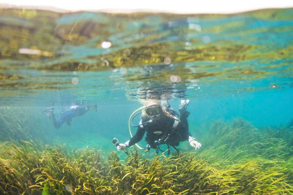 Florida Scuba Diving Road Trip Guide