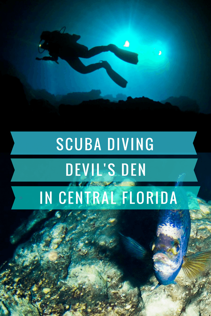 Scuba Diving Florida's Devil Den