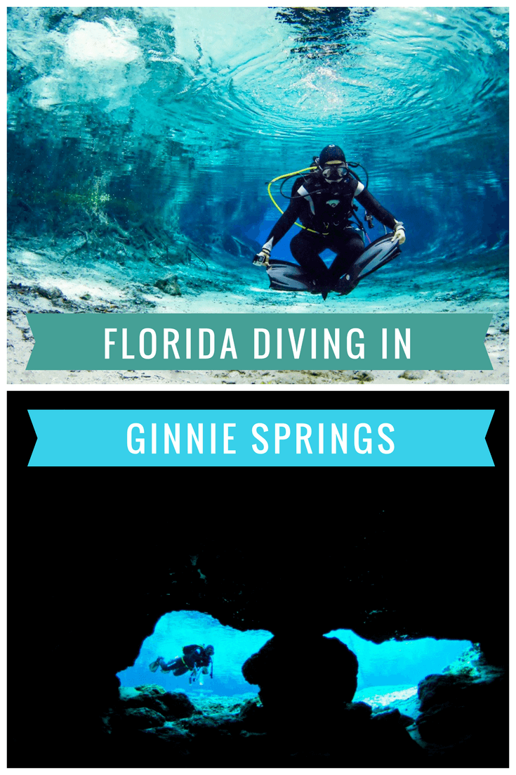 Florida Diving in Ginnie Springs