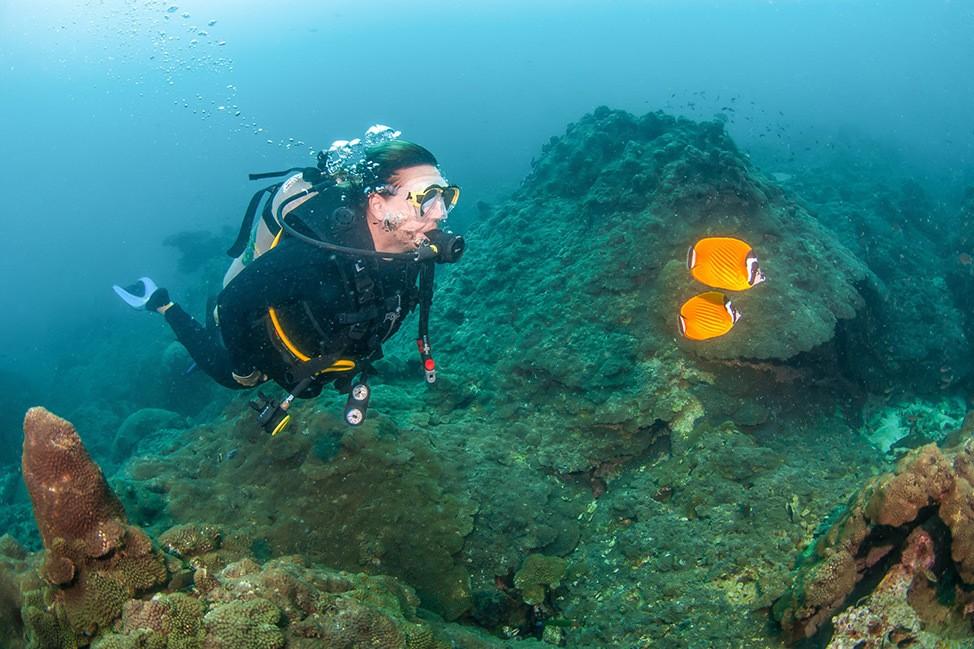 Scuba diving at Wander Women Dive and Yoga Retreats, Koh Tao, Thailand