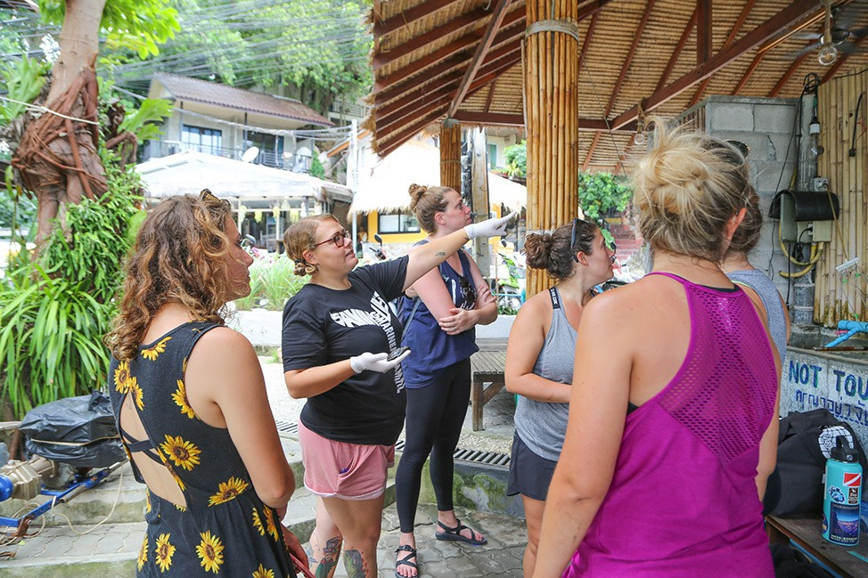 Visiting a turtle conservation project, Wander Women Retreats, Thailand
