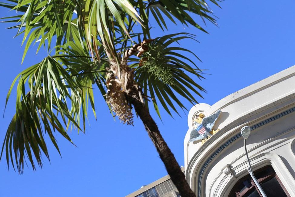 Chinatown Oahu Walking Tour