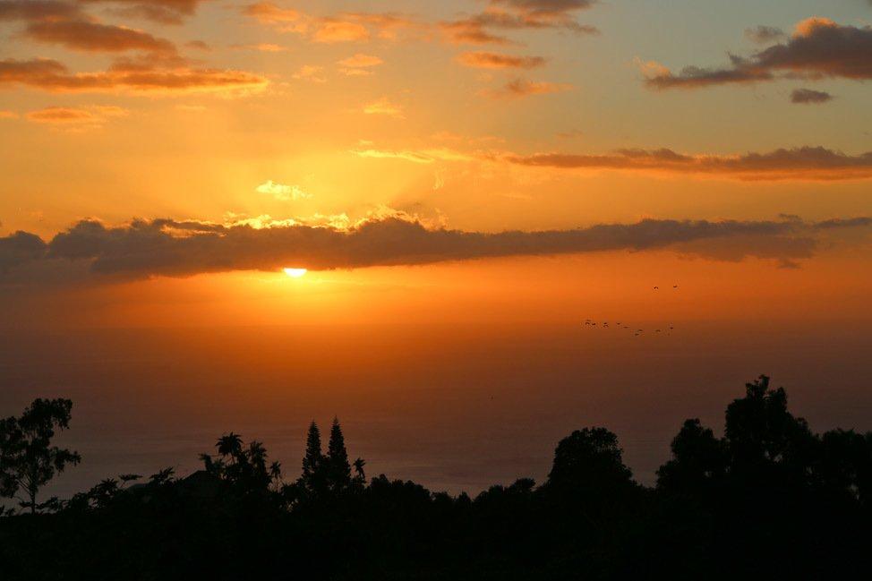 Upcountry Maui Sunset