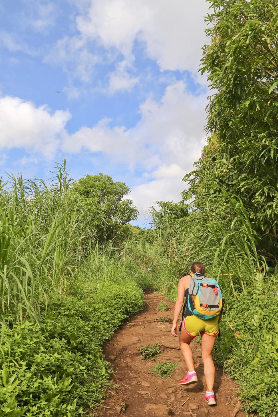 Road to Hana Road Trip Itinerary