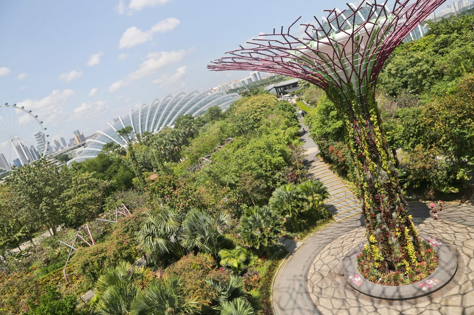 Gardens By The Bay Singapore Travel Blog