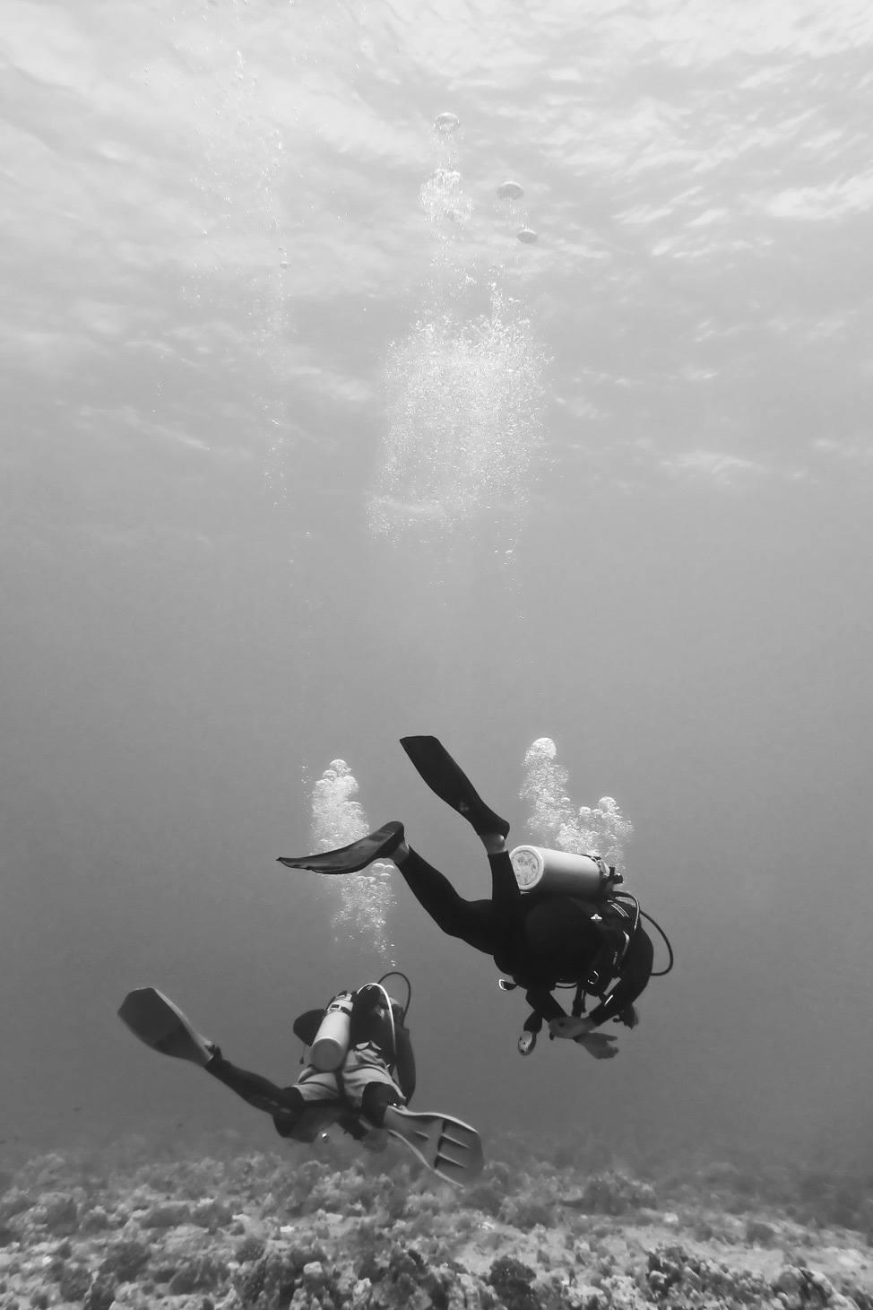 Scuba diving on Oahu
