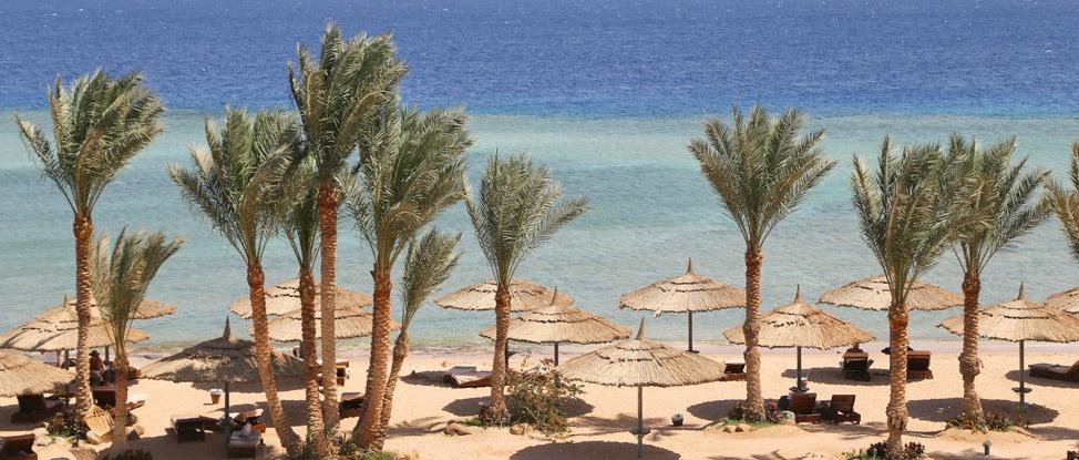 The Sinai Adventures Begin in Sharm El Sheikh thumbnail