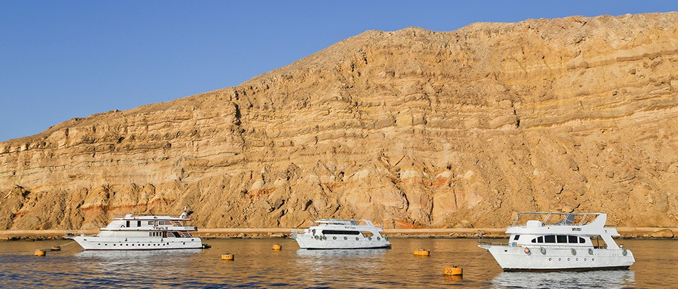 See the Red Sea: A Review of the King Snefro Liveaboard and PADI Travel thumbnail