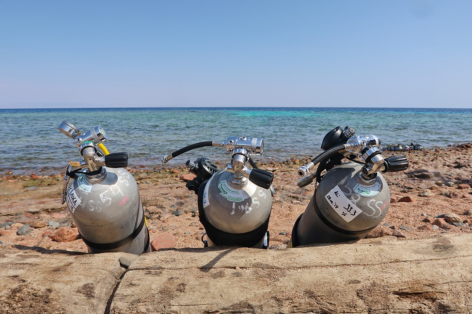 Shore diving in Dahab, Egypt