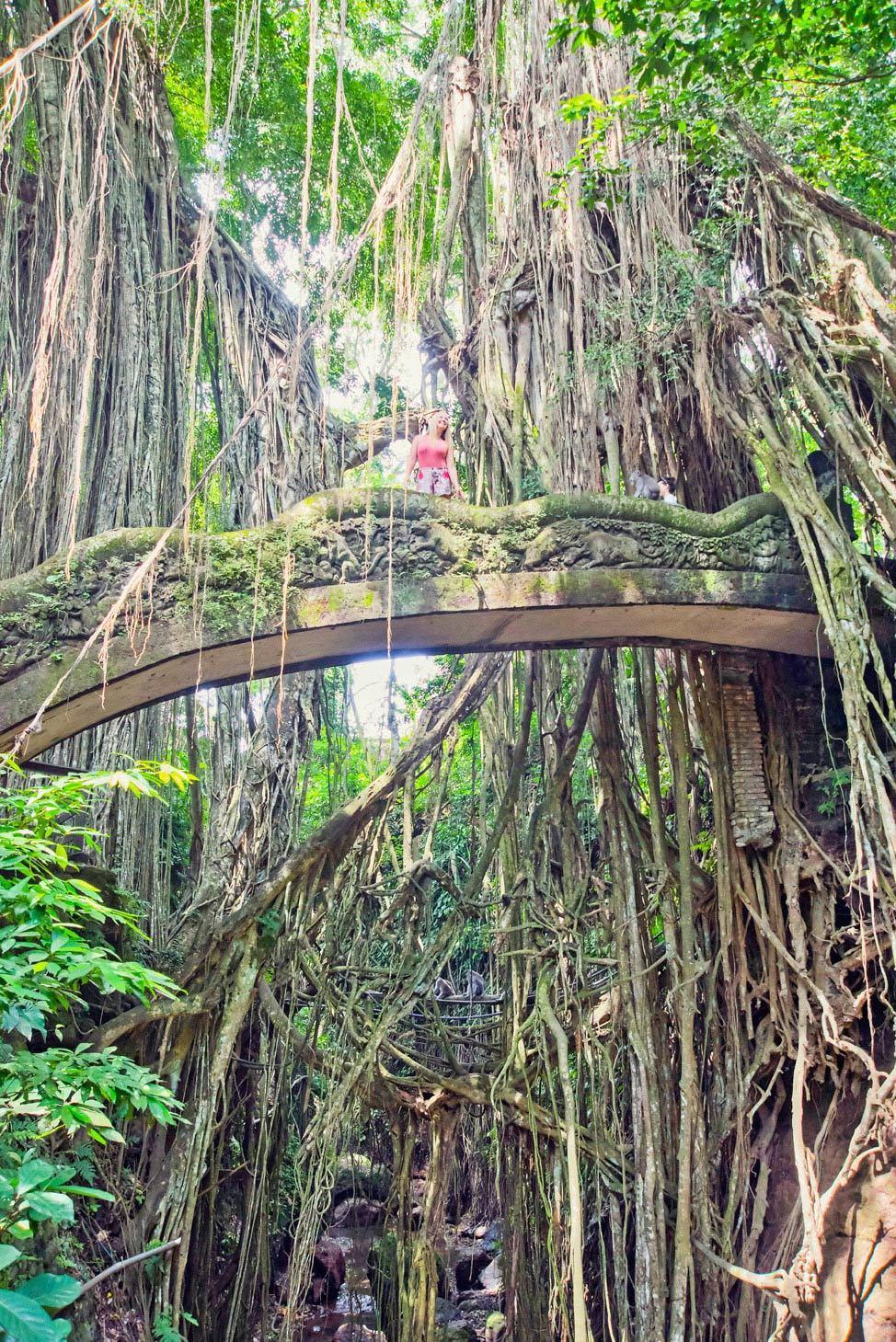 Ubud Monkey Temple Bali